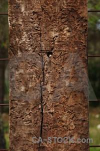 Brown texture wood post.