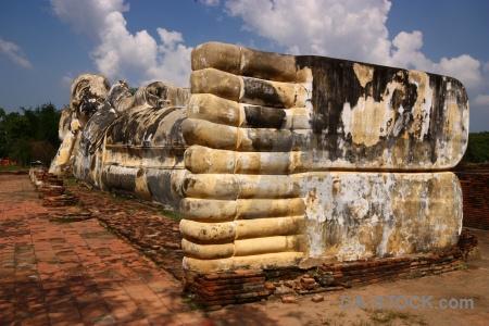 Buddha brick tree wat lokkayasutharam sky.