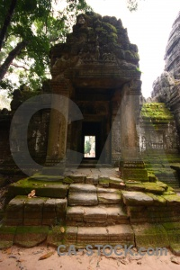 Buddhism angkor plant asia unesco.
