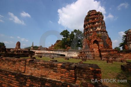 Buddhism asia tree wat mahathat brick.