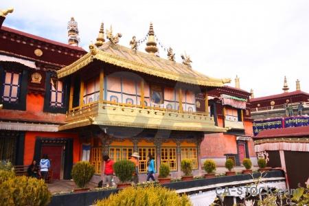 Buddhism bush east asia monastery qokang.