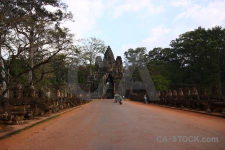 Buddhism cambodia siem reap stone tree.