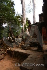 Buddhism column stone unesco lichen.