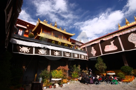 Buddhism qokang monastery buddhist bush altitude.