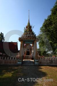 Buddhism tree ayutthaya thailand stupa.