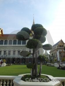 Buddhist chakri maha prasat building buddhism tree.