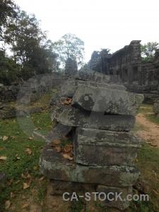 Buddhist fungus asia angkor southeast.