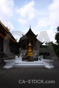 Buddhist southeast asia chiang mai statue tree.