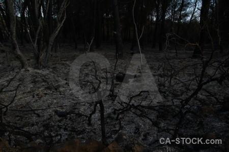 Burnt ash montgo fire europe javea.