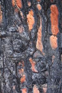 Burnt europe spain bark texture.