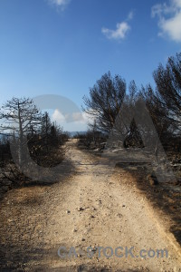 Burnt javea spain montgo fire ash.
