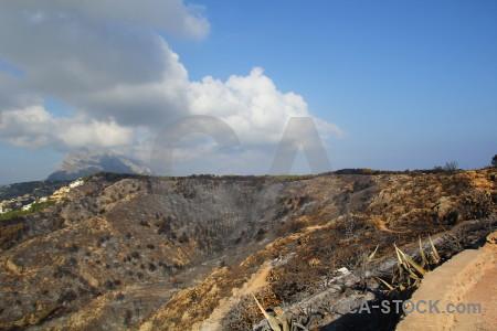 Burnt spain montgo fire tree europe.