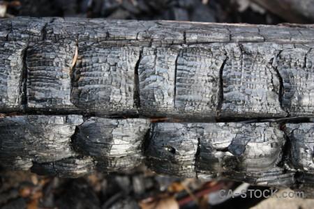 Burnt texture wood.