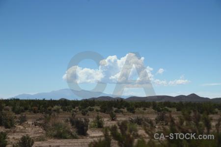 Bush andes altitude south america landscape.