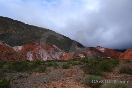 Bush rock argentina purmamarca cerro de los siete colores.