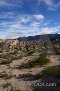 Calchaqui valley argentina bush landscape quebrada de las flechas.