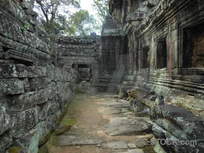 Cambodia block angkor moss unesco.