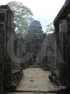 Cambodia ruin block tree lichen.