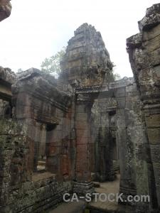 Cambodia sky siem reap angkor fungus.