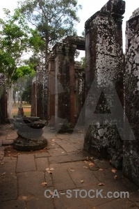 Cambodia tree ruin column siem reap.
