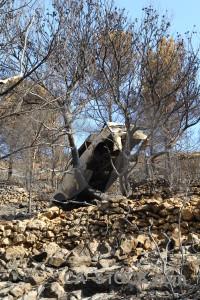 Car vehicle montgo fire rock burnt.