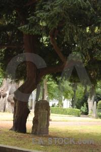 Cemetery statue green grave.