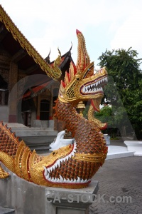 Chiang mai dragon buddhist temple buddhism.