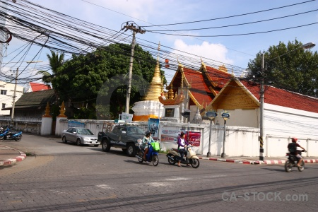 Chiang mai thailand buddhism tree buddhist.
