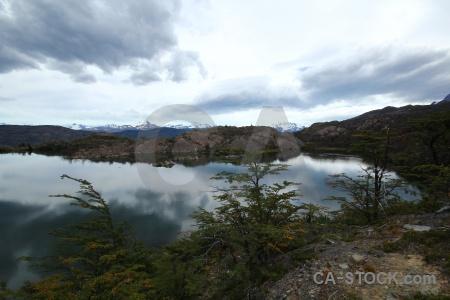 Chile patagonia laguna los patos torres del paine grass.