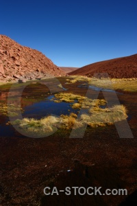 Chile south america sky pond weed andes.