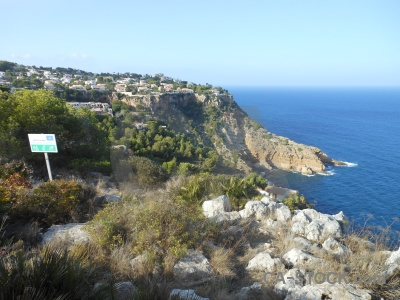 Cliff tree spain water sky.