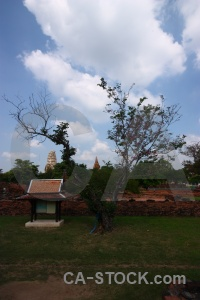 Cloud asia stupa buddhist tree.