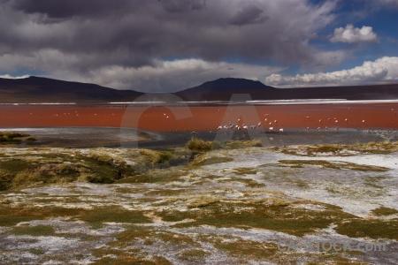 Cloud bolivia mountain sky laguna colorada.