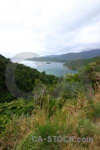 Cloud landscape lake bush south island.