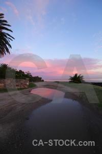 Cloud sunrise palm tree sky uruguay.