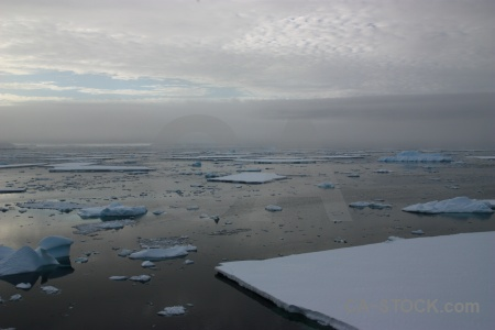 Cloud water antarctic peninsula antarctica fog.