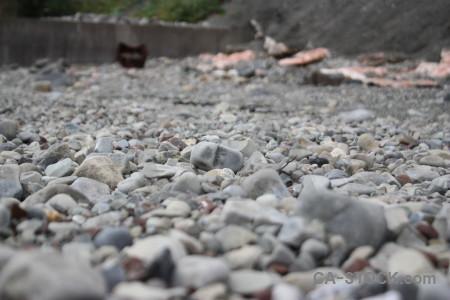 Coast gray stone.