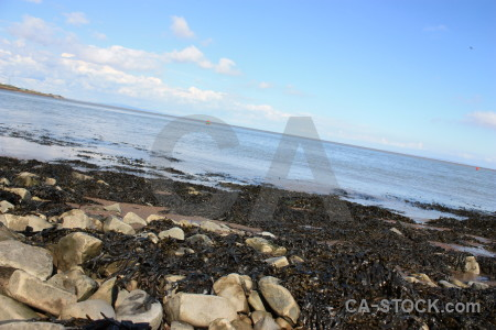 Coast seaweed landscape rock.