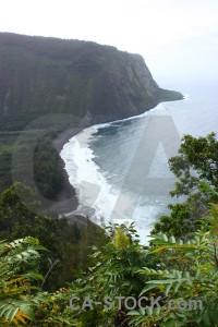 Coast white green landscape.