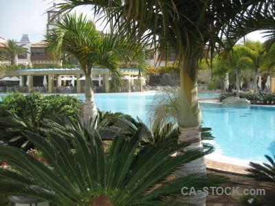 Cyan pool water green.