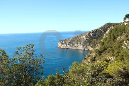 Cyan sky blue cliff tree.