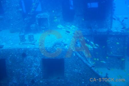 Cyan underwater blue.