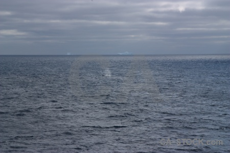 Day 4 animal drake passage sea cloud.