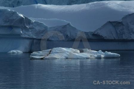 Day 5 marguerite bay antarctica cruise south pole sea.