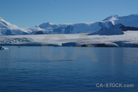 Day 6 mountain water antarctica adelaide island.