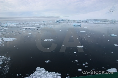 Day 6 water antarctic peninsula reflection sea ice.