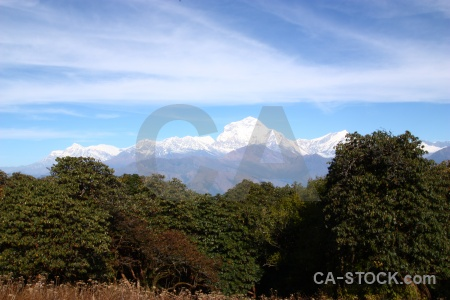Dhampus peak mountain annapurna sanctuary trek tukche cloud.