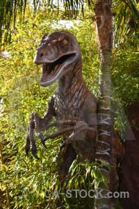 Dinosaur yellow animal reptile green.