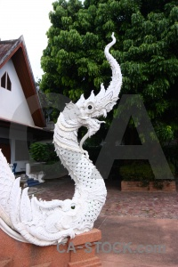 Dragon asia buddhism animal serpent.