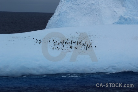 Drake passage antarctica cruise water day 4 sea.